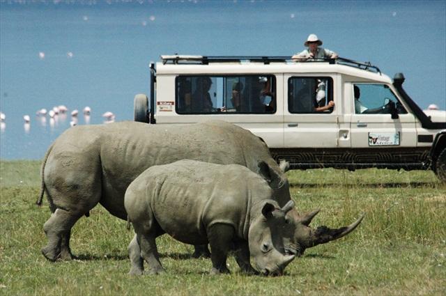 Africké safari zájezd Keňa nosorožci