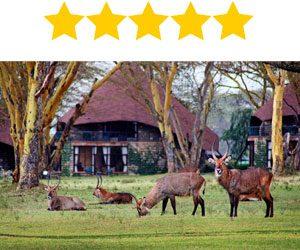 Naivasha Sopa Resort Keňa Afrika