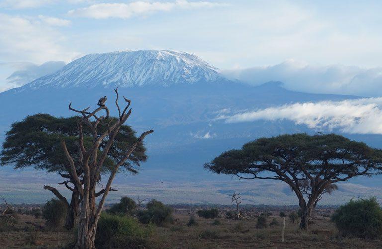 Africké safari zájezd Keňa Kilimandžáro