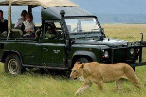 Národní park Masai Mara Keňa